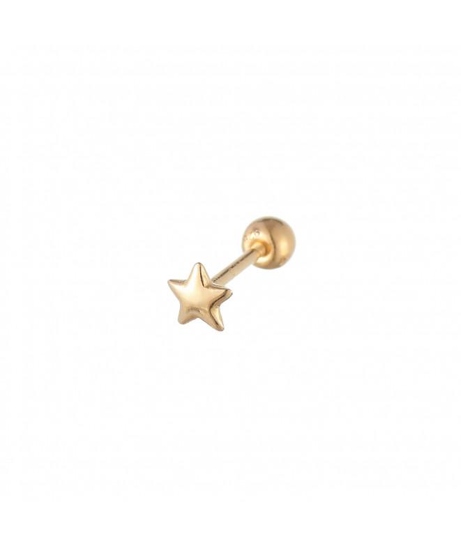 Pendiente Estrella Rosca Oro